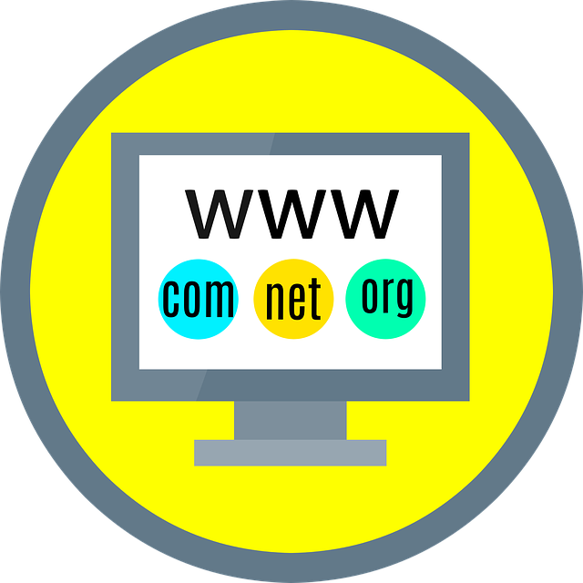 What is web hosting and why do I need it